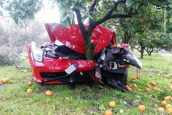 تصادف فراری 260 هزار دلاری با درخت+عکس