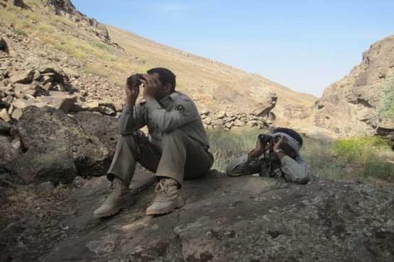 شکارچیان,غیرمجاز ,محیطبانان,سلاح شکاری,نزاع