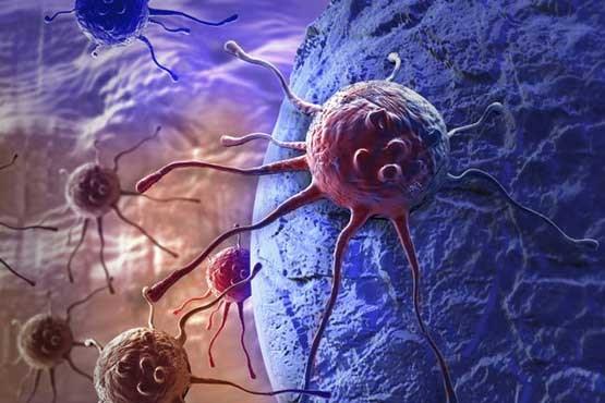 سلولی که قاتل سرطان است