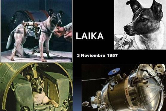 تصویر سرنوشت شوم نخستین فضانورد جهان + عکس