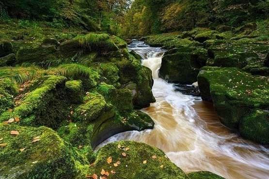 خطرناک ترین رودخانه بی بازگشت جهان + عکس