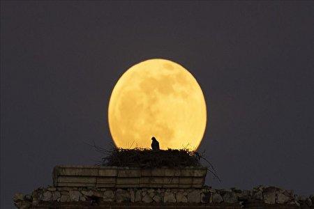 آخرین شب سال که ماه کامل خواهد بود