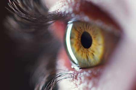 استفاده از سلولهای بنیادی جسد برای درمان نابینایی
