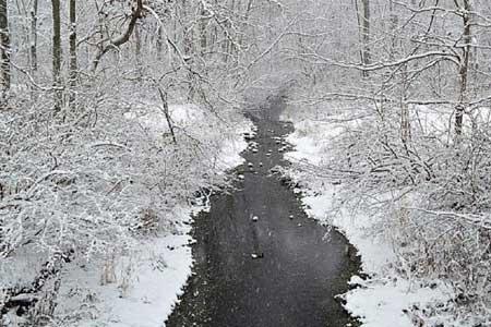 چرا هنگام بارش برف دنیا آرامتر به نظر میرسد؟