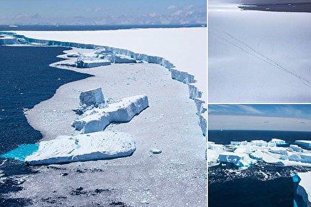 تمساح ترسناکی ملقب به پادشاه باتلاق /نزدیک شدن هولناک کوه یخ به یک جزیره (تصاویر)
