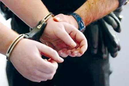 راننده جنجالی دستگیر شد