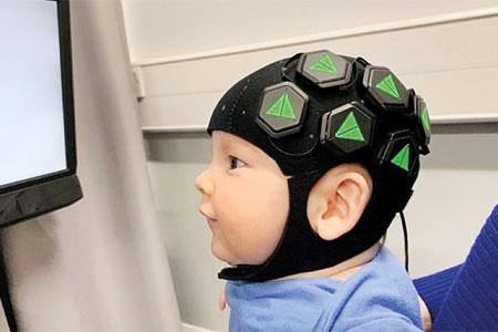 چگونگی تحقیق روی مغزهای کوچک