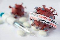 تشریح روش های ساخت واکسن کرونا در چهارمین نشست ترویج علم بنیاد مصطفی(ص)