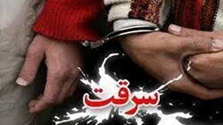 سارقان خانههای نازی آباد تهران به دام افتادند