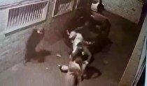 واکنش پلیس به انتشارفیلم زورگیری از دو زن/ سارقان قمهبهدست دستگیر شدند