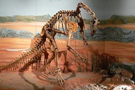 بازسازی دیجیتالی عجیب از مغر یک دایناسور